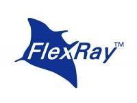 Знакомимся с шиной данных Flex Ray (BMW)