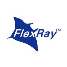 Шина данных Flex Ray (BMW)